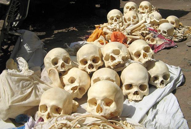 Тысячи трупов с черного рынка превращают в средства для потенции и флейты