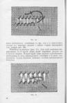 Превью 7 (456x700, 268Kb)