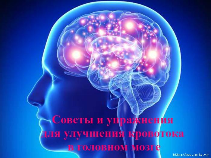 """alt=""""Советы и упражнения для улучшения кровотока в головном мозге""""/2835299_Soveti_i_yprajneniya_dlya_ylychsheniya_krovotoka_v_golovnom_mozge (700x525, 229Kb)"""