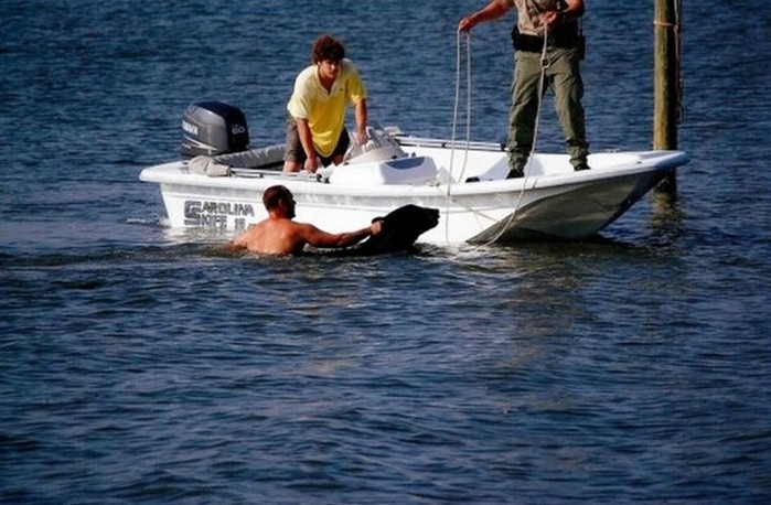 5 шокирующих находок, сделанных в морских пучинах и ставших достоянием общественности