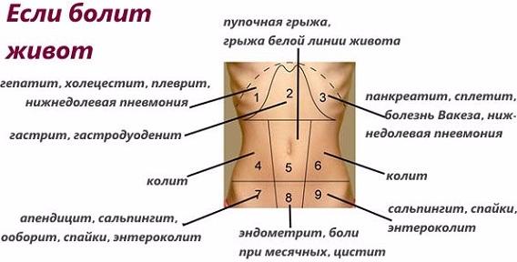 138288352_kogdabolitnizzhivota3 (568x288, 112Kb)