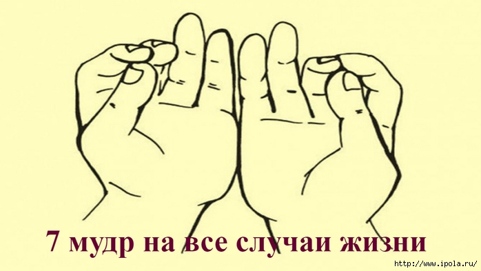 "alt=""7 мудр на все случаи жизни""/2835299_7_mydr_na_vse_slychai_jizni (700x393, 123Kb)"