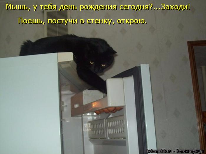 kotomatritsa_OT (700x524, 237Kb)