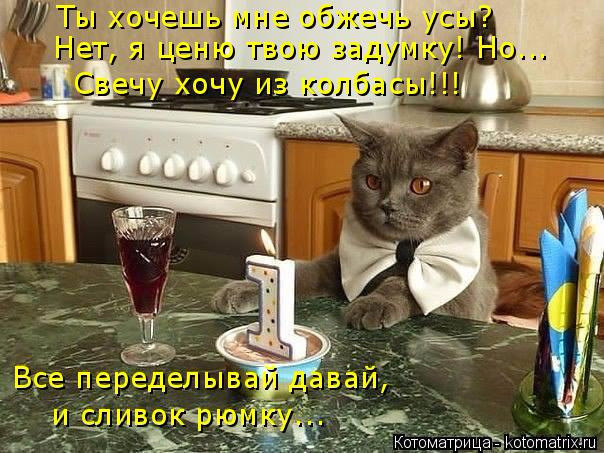 kotomatritsa_yB (604x453, 279Kb)