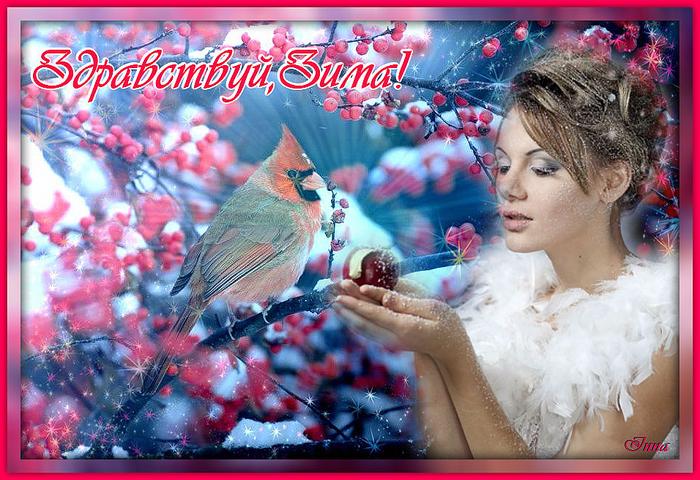 cardinal in snow 2.jpg8888 (700x480, 515Kb)
