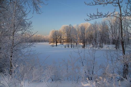 Сибирское утро (500x333, 49Kb)