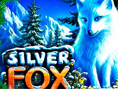 3. Silver Fox (500x375, 278Kb)