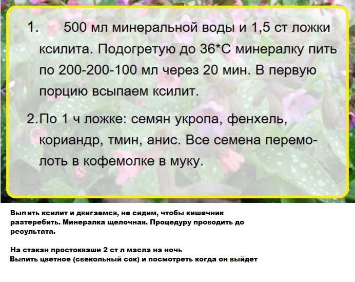 _ochishenie_kishechnika_travami
