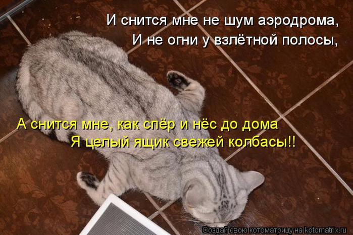 kotomatritsa_C (1) (700x466, 373Kb)
