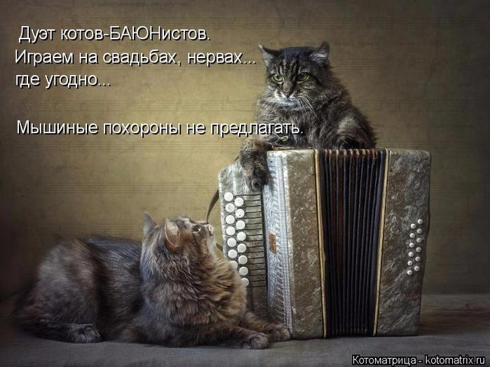 kotomatritsa_K (700x524, 323Kb)