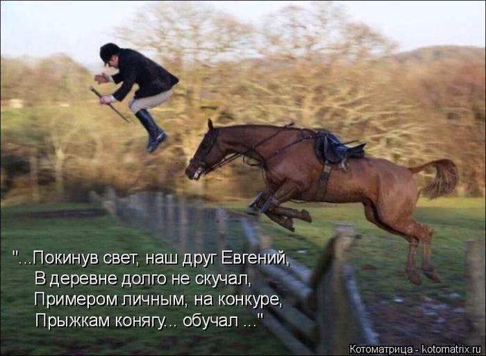 kotomatritsa_P (700x513, 342Kb)