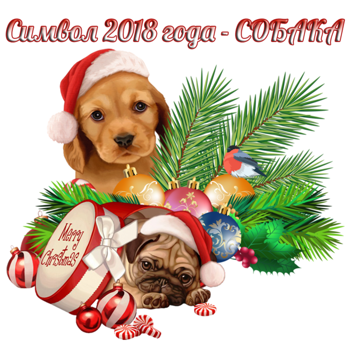 Год собаки (700x683, 619Kb)