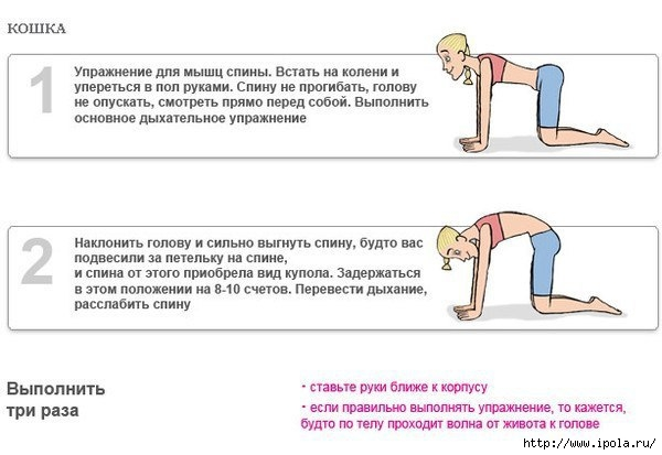 "alt=""Дыхательная гимнастика для похудения""/2835299_Dihatelnaya_gimnastika_Bodifleks_10 (600x413, 103Kb)"