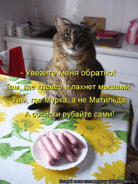 1512715775_19 (480x640, 247Kb)
