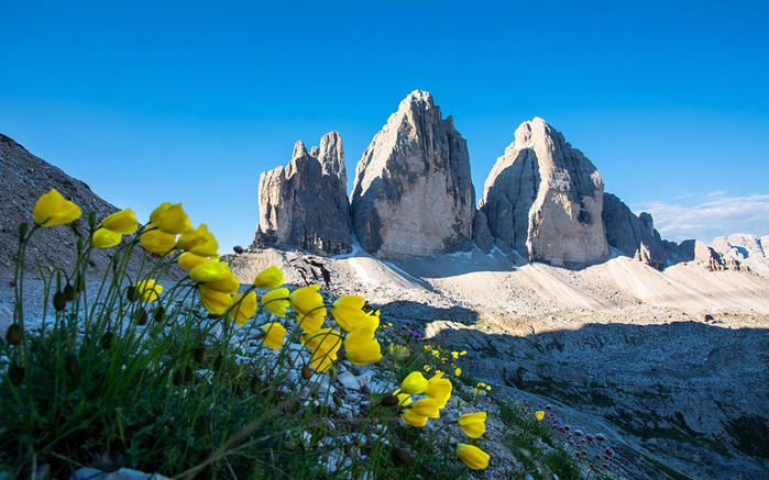 Dolomites-Three-Peaks-of-Lavaredo-Italy-Yellow-spring-spring-flowers-Landscape-Wallpaper-Hd-1920x1200-1440x900 (700x437, 374Kb)