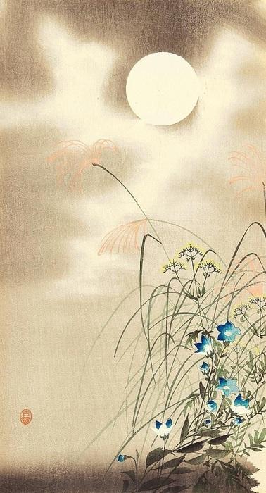 Lune, fleurs et herbe (378x700, 121Kb)