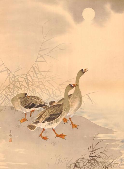 4 Three Geese and Sun (514x700, 219Kb)