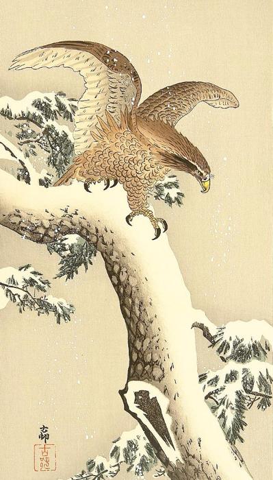 Eagle (399x700, 340Kb)