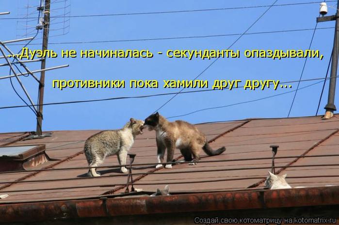 kotomatritsa_g (700x465, 322Kb)