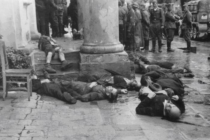 Кто дал отпор немецко фашистским захватчикам в числе первых
