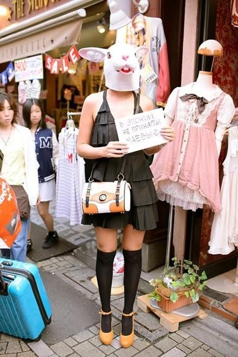 Необычные факты о Японии в картинках с подписями