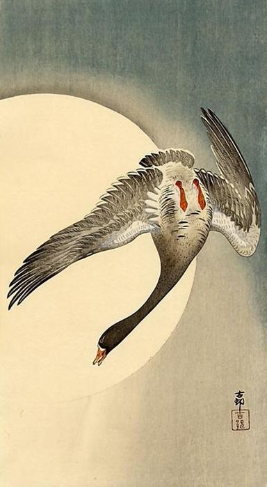 ++Flying Geese (384x700, 200Kb)