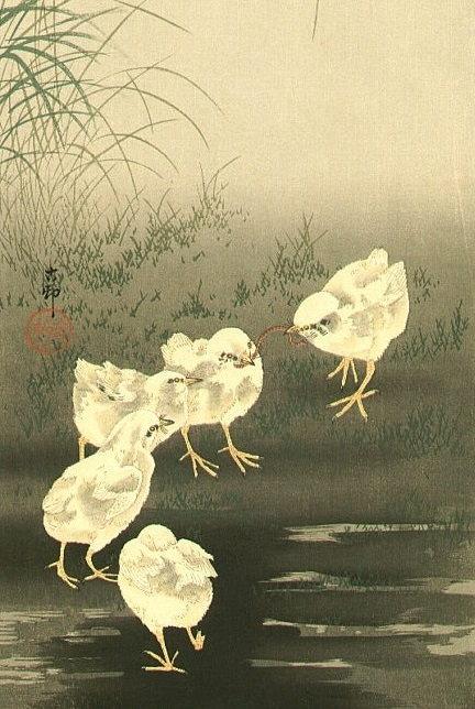 Цыплята и червяк... (432x644, 245Kb)