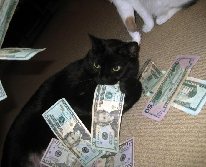 This money cat is eating the money _51e4d10ff9b26e8a29278b461585ecbe (700x567, 114Kb)