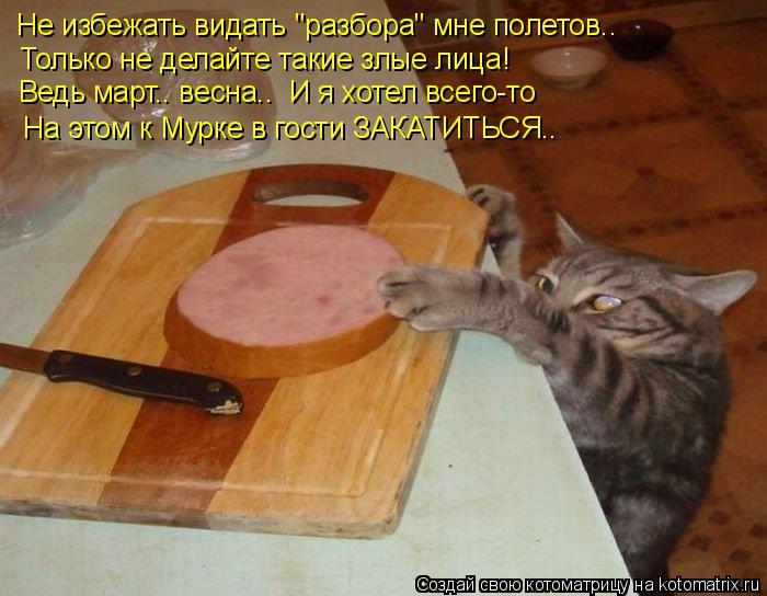 kotomatritsa_F (700x544, 290Kb)