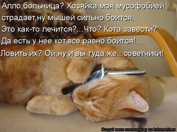 kotomatritsa_I (700x524, 385Kb)