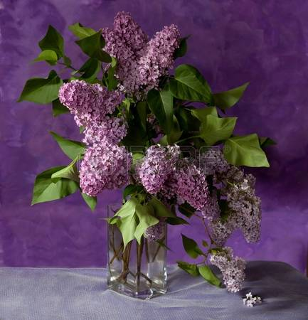 13078925-bouquet-of-spring-purple-lilac-in-a-vase-still-life (433x450, 30Kb)