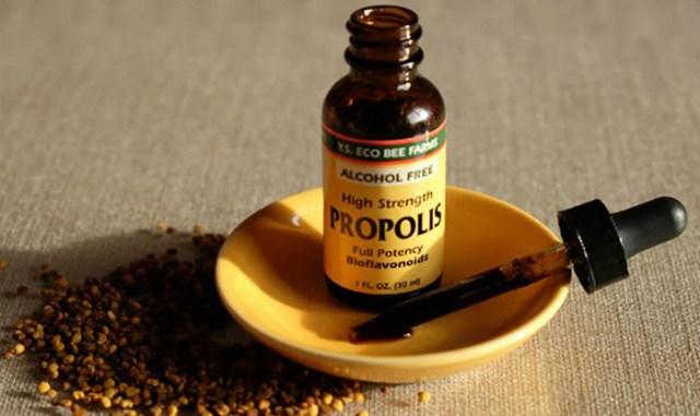 _propolis (640x381, 47Kb)