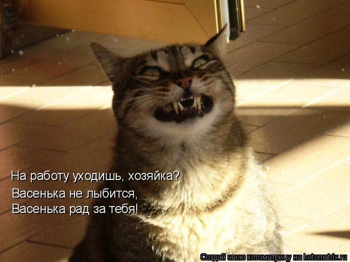 kotomatritsa_U (1) (700x524, 334Kb)