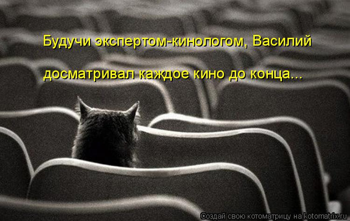 kotomatritsa_k (700x442, 259Kb)
