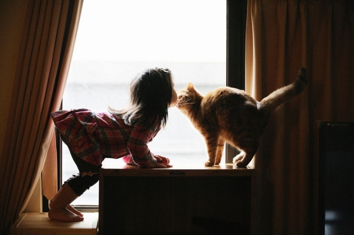 9397310-R3L8T8D-800-children-cat-playing-photography-8__880 (700x465, 77Kb)