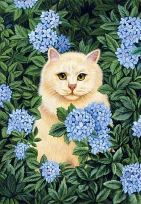 db_Brownd_Elizabeth_Persian_Cat_-_Blue_Hydrangea1 (486x700, 128Kb)