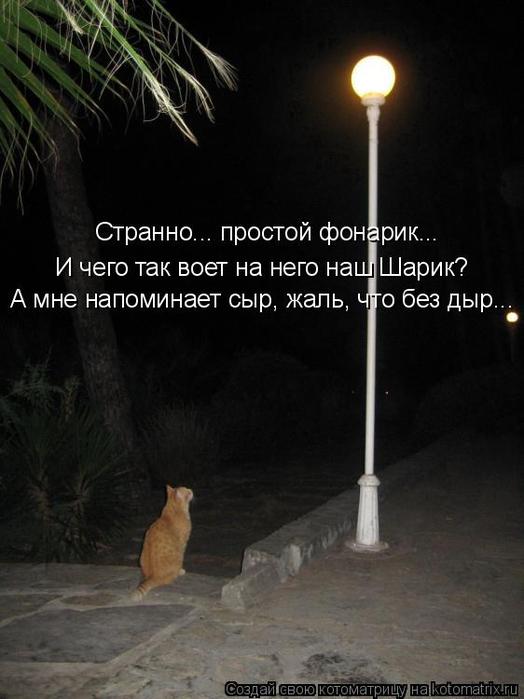 kotomatritsa_q (524x700, 230Kb)