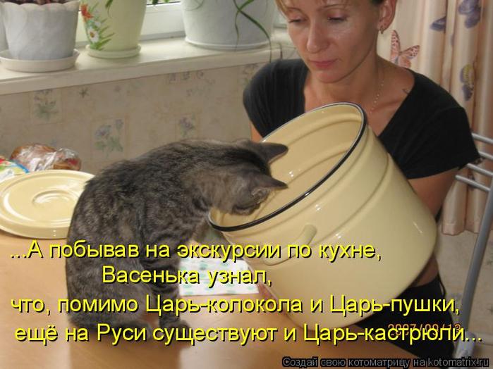 kotomatritsa_ir (700x524, 367Kb)