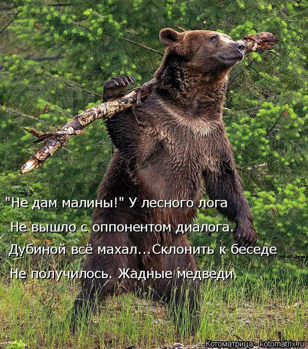 kotomatritsa_j (1) (617x700, 682Kb)