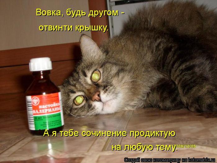kotomatritsa_p (2) (700x524, 359Kb)