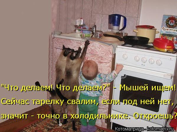 kotomatritsa_l (1) (600x450, 210Kb)
