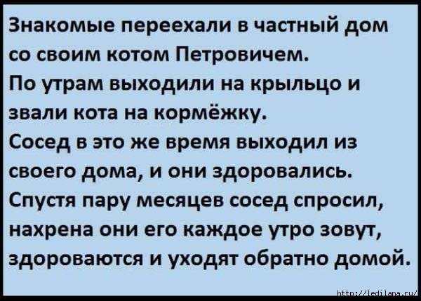 ПЕТРОВИЧ!