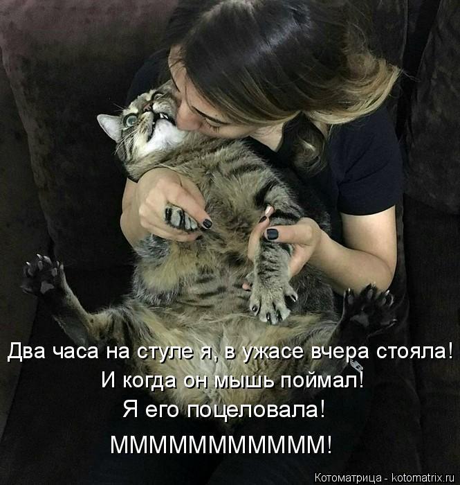 kotomatritsa_R (665x700, 230Kb)
