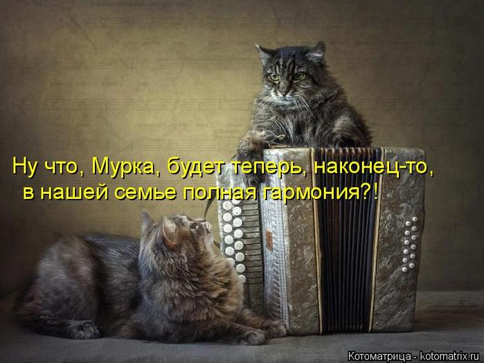 kotomatritsa_D (700x524, 319Kb)