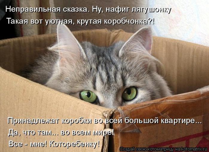 kotomatritsa_- (700x509, 369Kb)