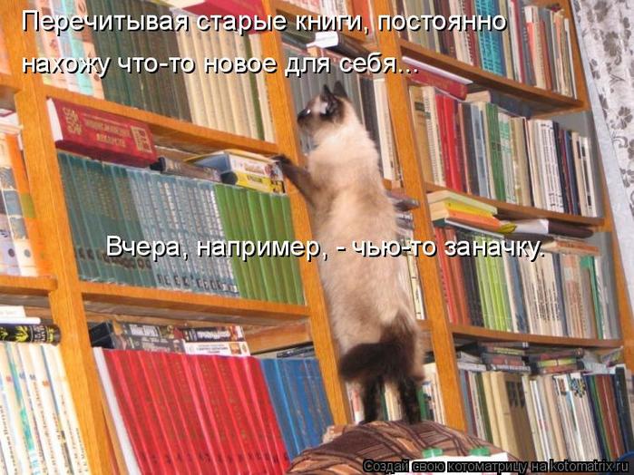 kotomatritsa_K (700x524, 461Kb)