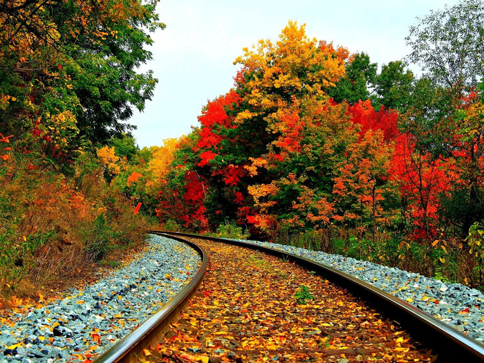 railroad-in-autumn-1024x768-wallpaper (700x525, 695Kb)