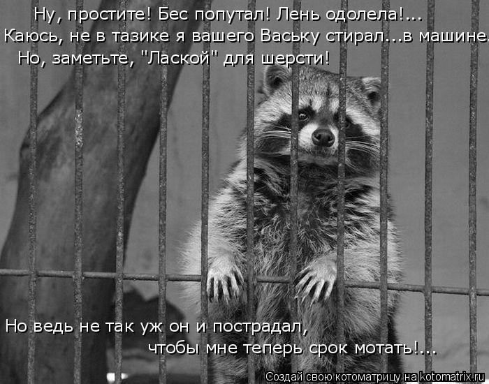 kotomatritsa_fi (700x550, 179Kb)