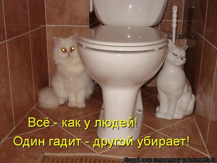 kotomatritsa_P (700x524, 297Kb)