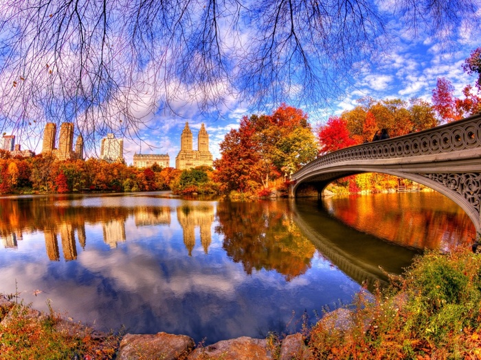 Architecture-Reflection-in-Central-Park-1400x1050 (700x525, 230Kb)